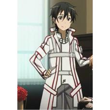 Костюм Рыцарей Крови из Sword Art Online