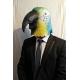 Маска попугая