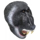 Маска Злая обезьяна / бабуин