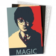 Плакаты Harry Potter