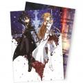Плакаты Sword Art Online