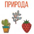 Значки с растениями
